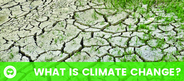 What is Climate Change?  How does it influence the environment?  Can it be stopped?